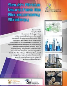 preview-bioeconomy-strategy-thumb resized